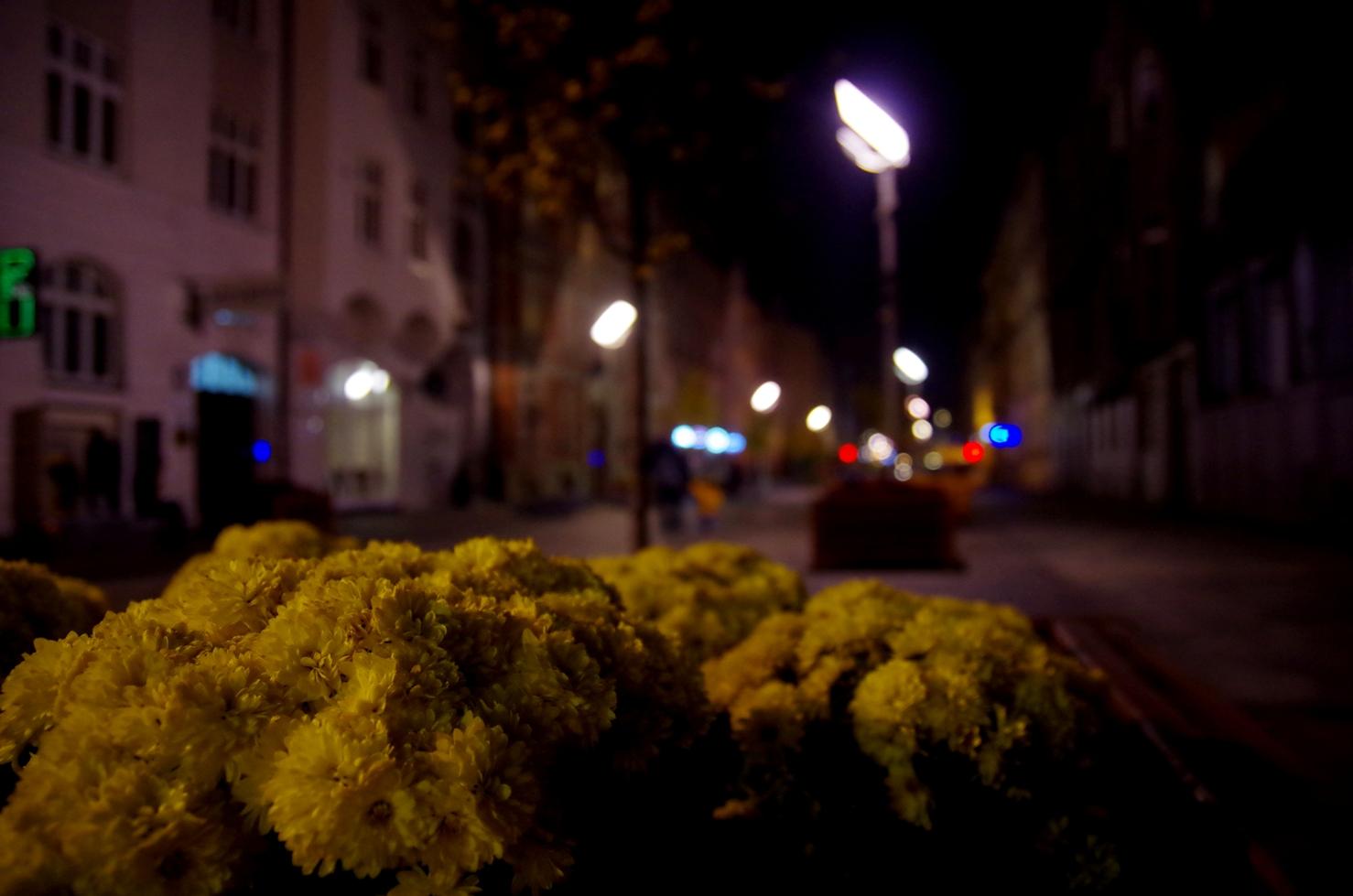 O tym jak poznać swoje miasto - Centrum Katowic - ulica Mariacka