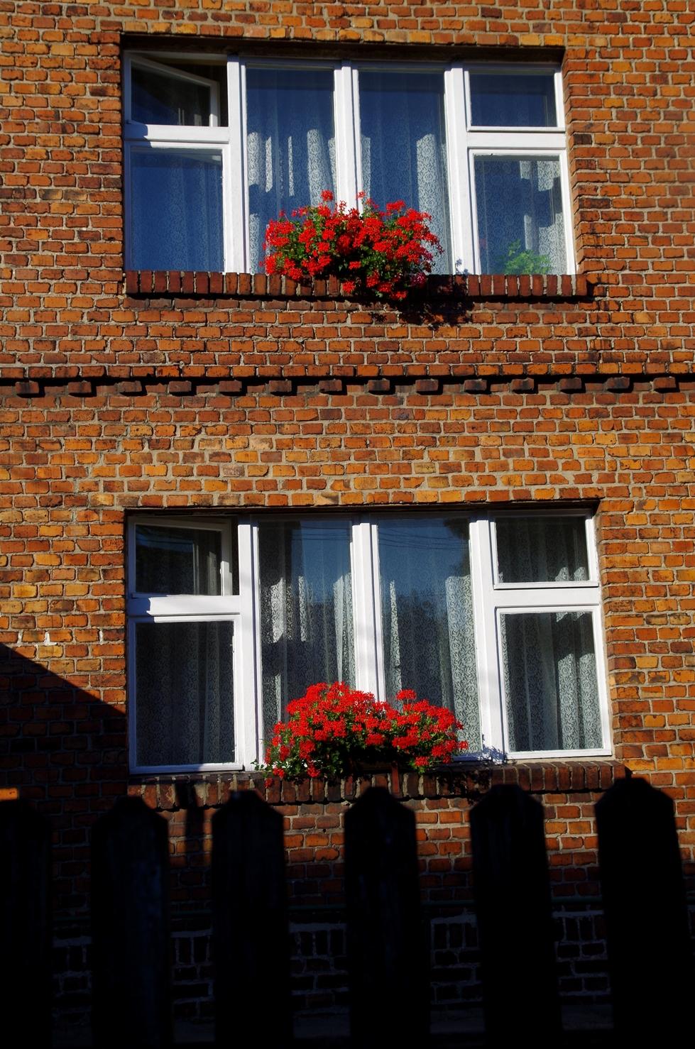 Podlesie i Zarzecze - czemu nie czerwone okna