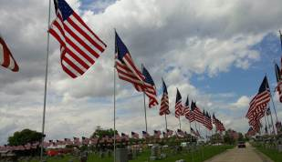 avenue of flags 2019 3