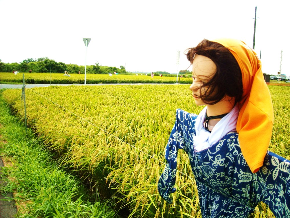 Today's hit - scarecrows (1/3)