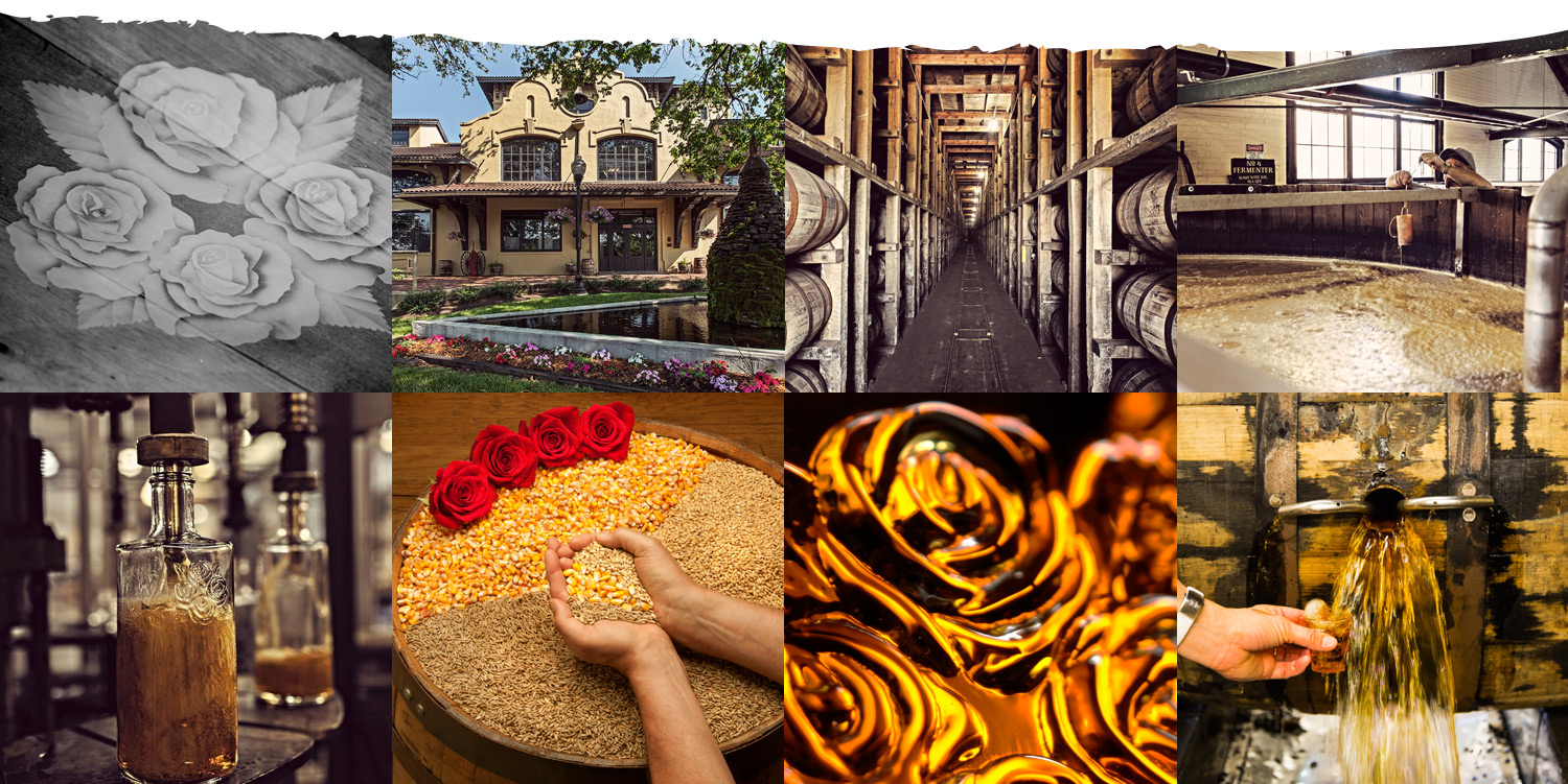 Four Roses image collage