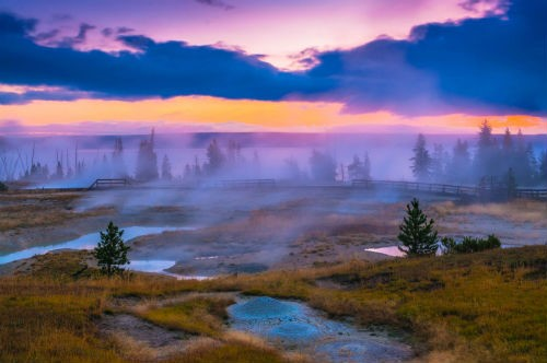 """yellowstone park - National Geographic's """"Yellowstone Live"""" Watch Party"""