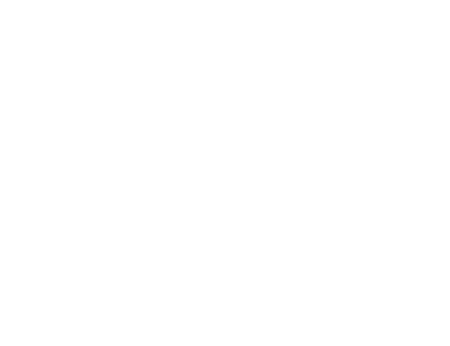 Wild Turkey Logo