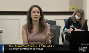 Kate testimony judiciary