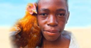 main-pic-chicken-boy-1030-wide-bg