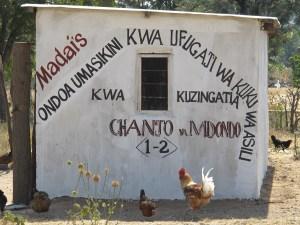 Tanzania ND control
