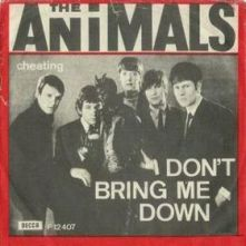 animals_don27t_bring_me_down