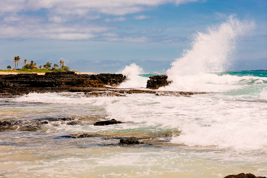 KyleSFord_Hawaii_Seattle_Vaca_0026