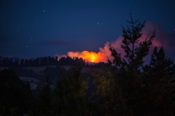 Night Sky Forest Fire