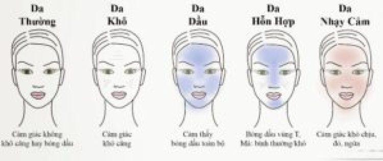 Phân loại các loại da mặt