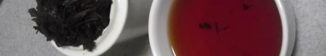 茶品種いずみ
