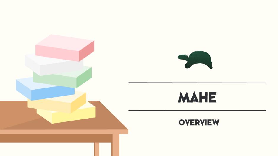 blog_thumbnail-mahe-ウミガメの島