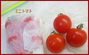 minitomato0417-1-226x300 お弁当レシピ 人気 ミニトマトのアレンジレシピ 保存方法も紹介します。