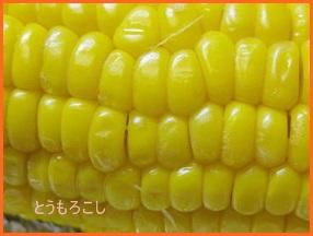 toumoro610-7