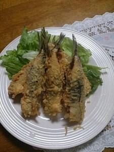 maiwasi712-1 マイワシのレシピ 釣りで一杯釣れたら この料理