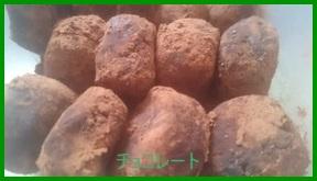 bare1-227x300 チョコレシピ 簡単!「材料3つ」で安く作る バレンタインにも!