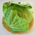 春キャベツ レシピ 人気 1 位 つくれぽ2000人以上を紹介します。