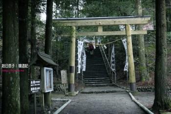 宮崎縣旅遊   蝦野市・白鳥神社   向千年靈地白鳥山樹齡五百年神木朝聖