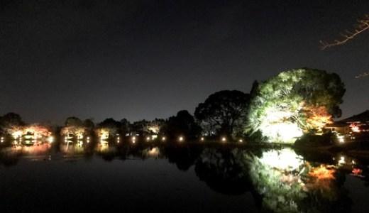 大覚寺のライトアップ