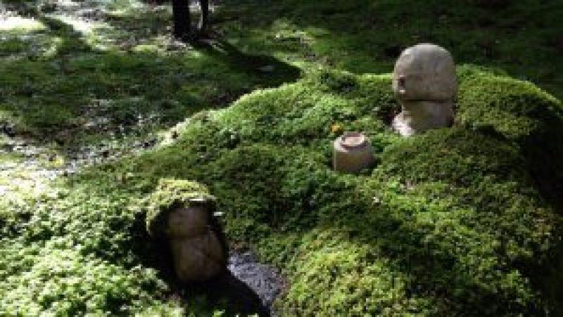京都大原三千院庭園地蔵