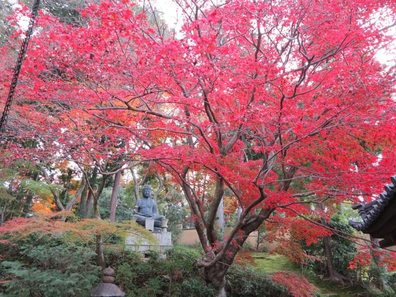 栄摂院紅葉仏像