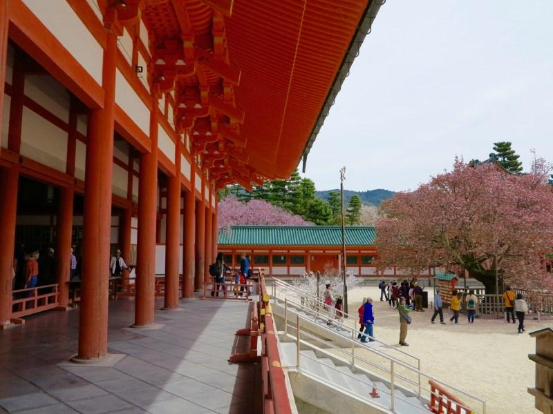 平安神宮桜お花見4