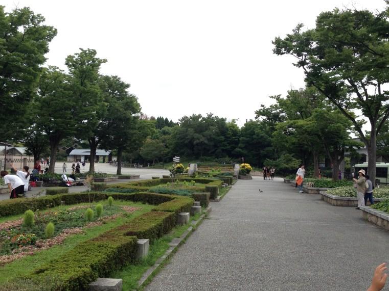梅小路公園1