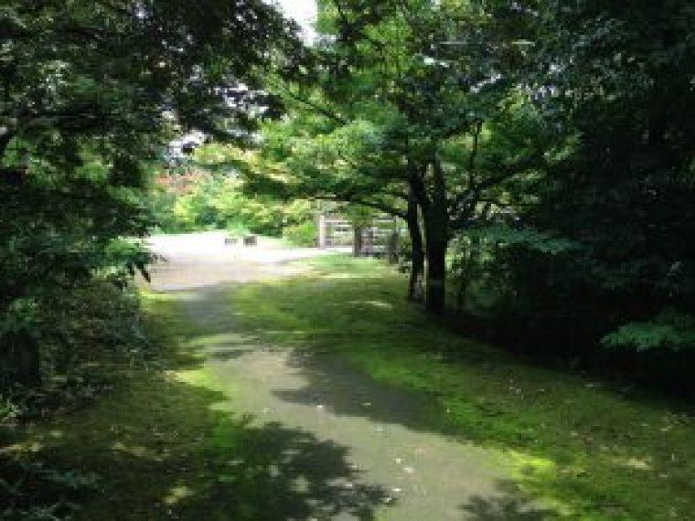 梅小路公園333