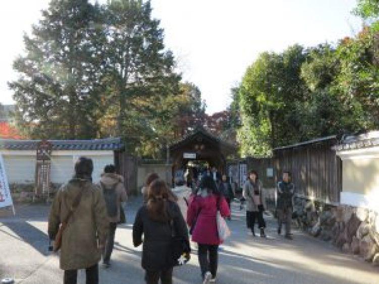 東福寺紅葉22