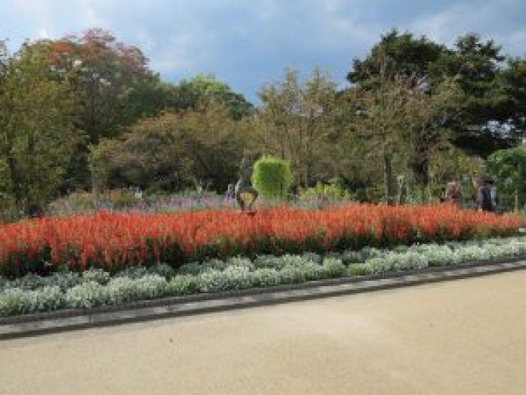 京都府立植物園28