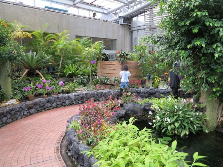 京都府立植物園111