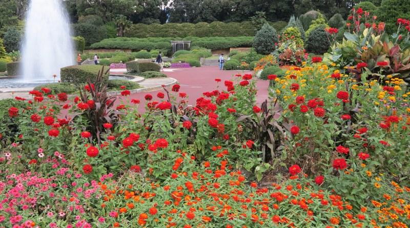京都府立植物園67