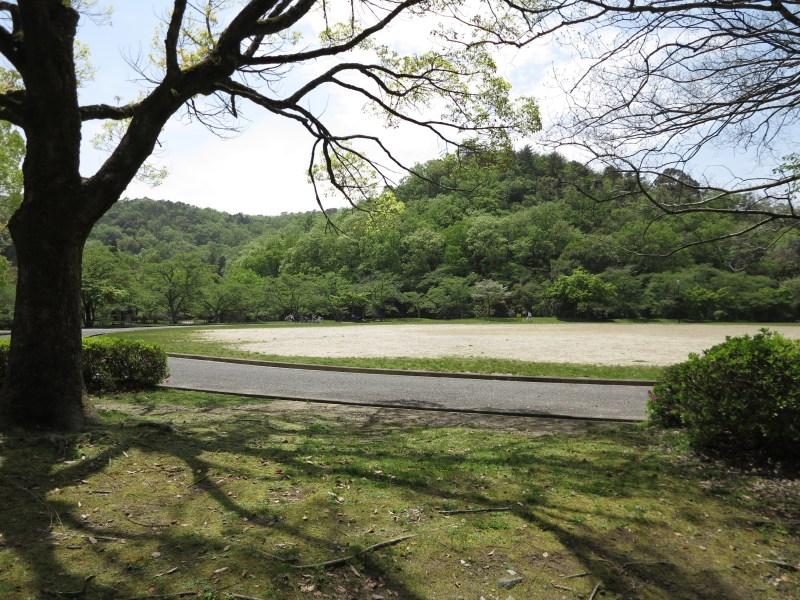 京都岩倉新緑6