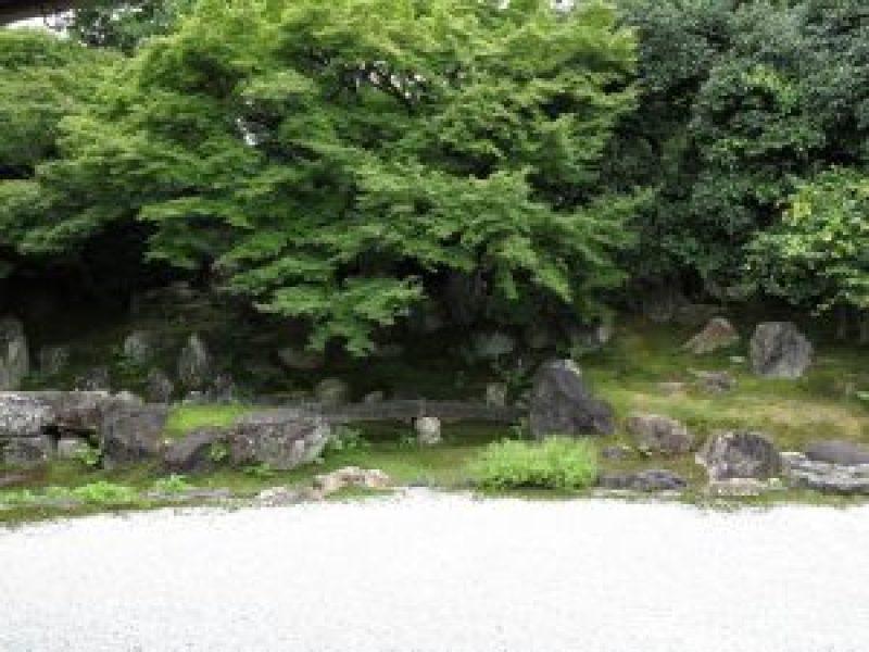 高台寺圓徳院9