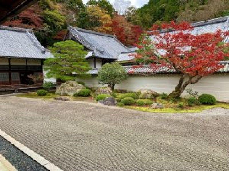 南禅寺kouyou33