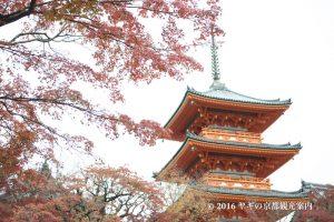清水寺の紅葉2017