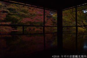 瑠璃光院の床紅葉