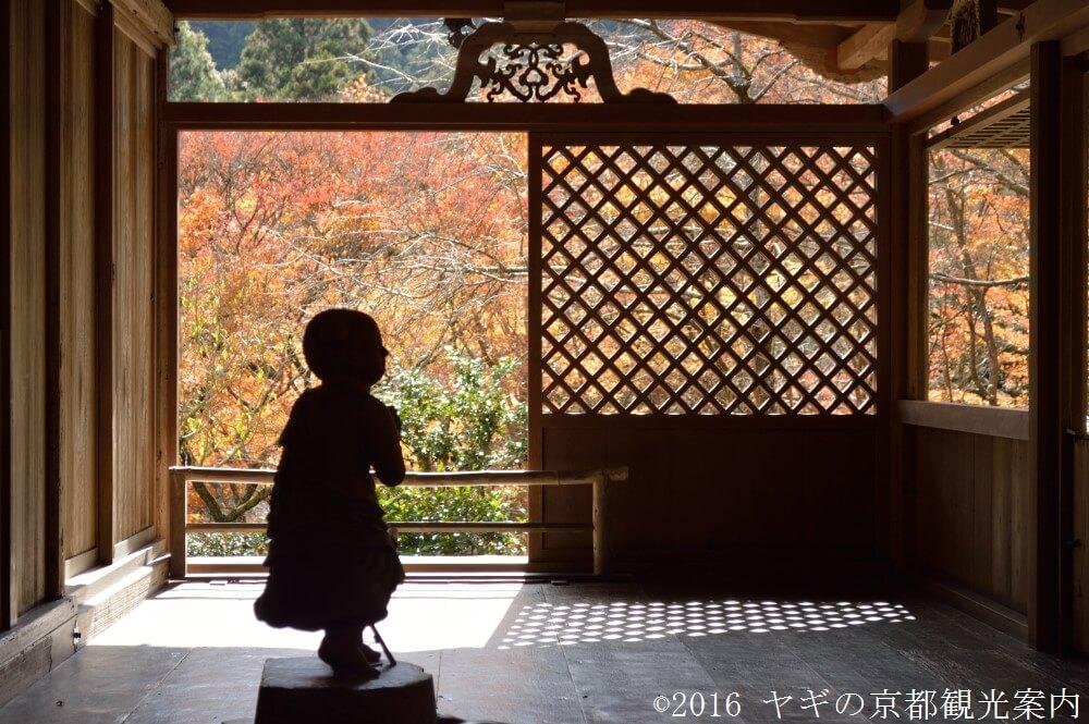 高山寺の紅葉