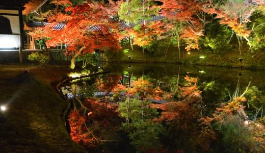 🍁 京都・秀吉とねねの寺「高台寺」紅葉☆ライトアップ☆夜間拝観・秋の美しい鏡池 Kodaiji KYOTO