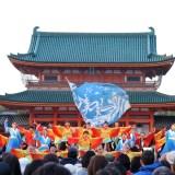 京都さくらよさこい・平安神宮・Tacci