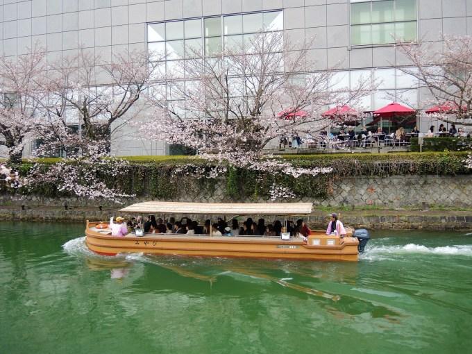 京都・岡崎疎水「桜回廊」十石舟