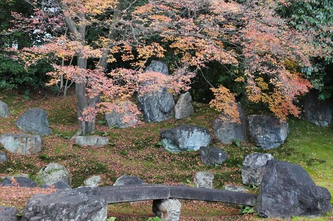 45圓徳院の北庭アップ