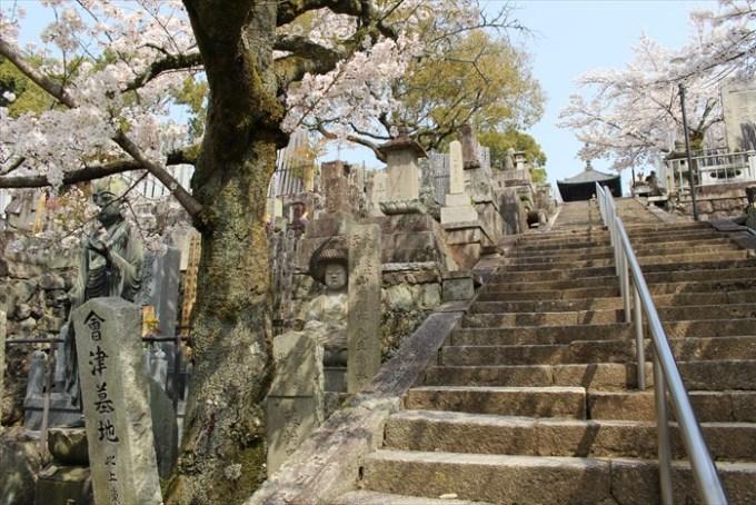 アフロ仏像(階段から)