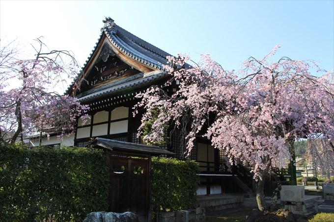 33妙満寺の大書院