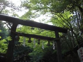 野宮神社見どころ