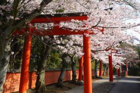 竹中稲荷神社