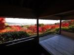 大河内山荘庭園紅葉