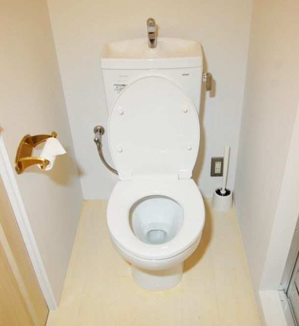 地震 発生 トイレ 行動