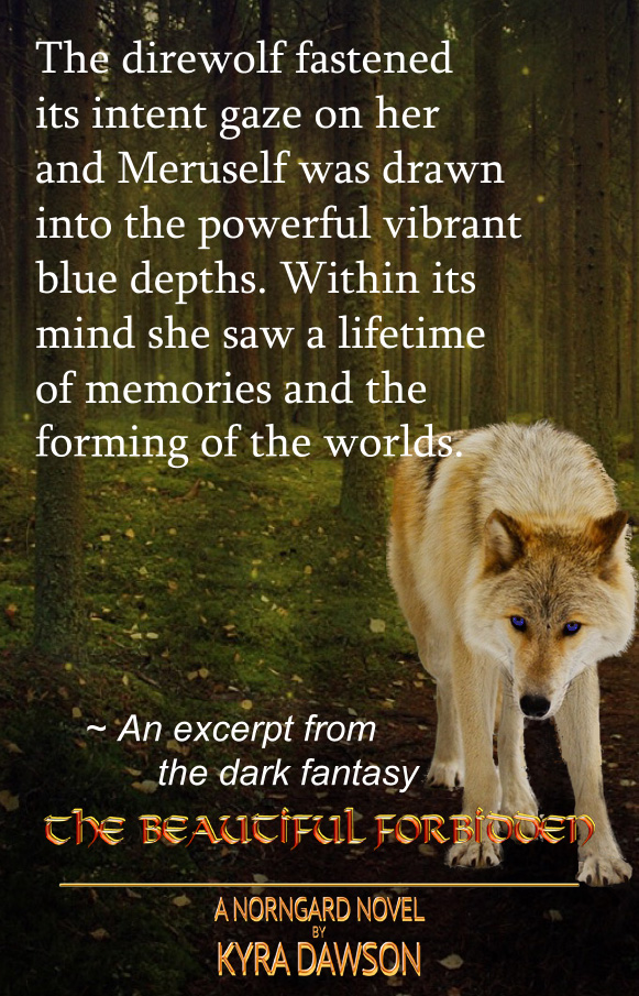 meruselfs-golden-blue-eyed-wolf-chapter-2-excerpt-VIII.jpg
