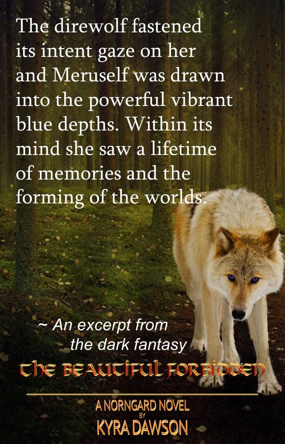 meruselfs-golden-blue-eyed-wolf-chapter-2-excerpt-VIII.jpg